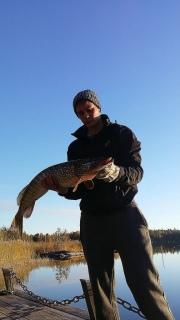 Hauki 4,20 kg