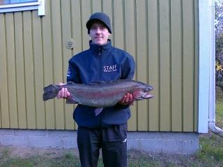Kirjolohi 5,40 kg
