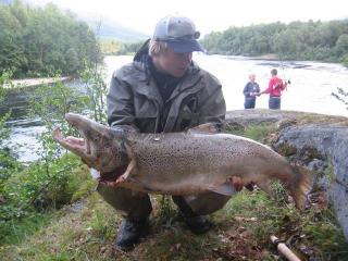 Merilohi 15,50 kg