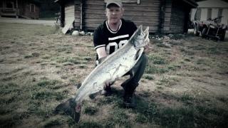 Merilohi 13,60 kg