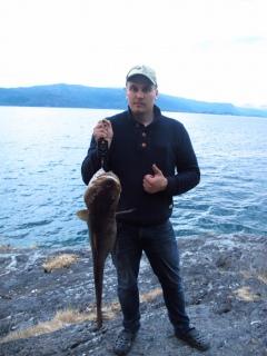 Turska 7,35 kg