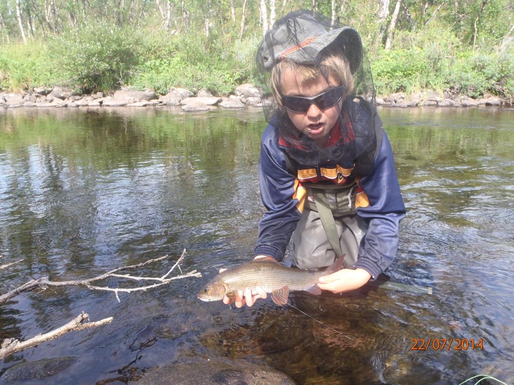 Finnmarkin harjusapajilta 2014, perholla tietenki