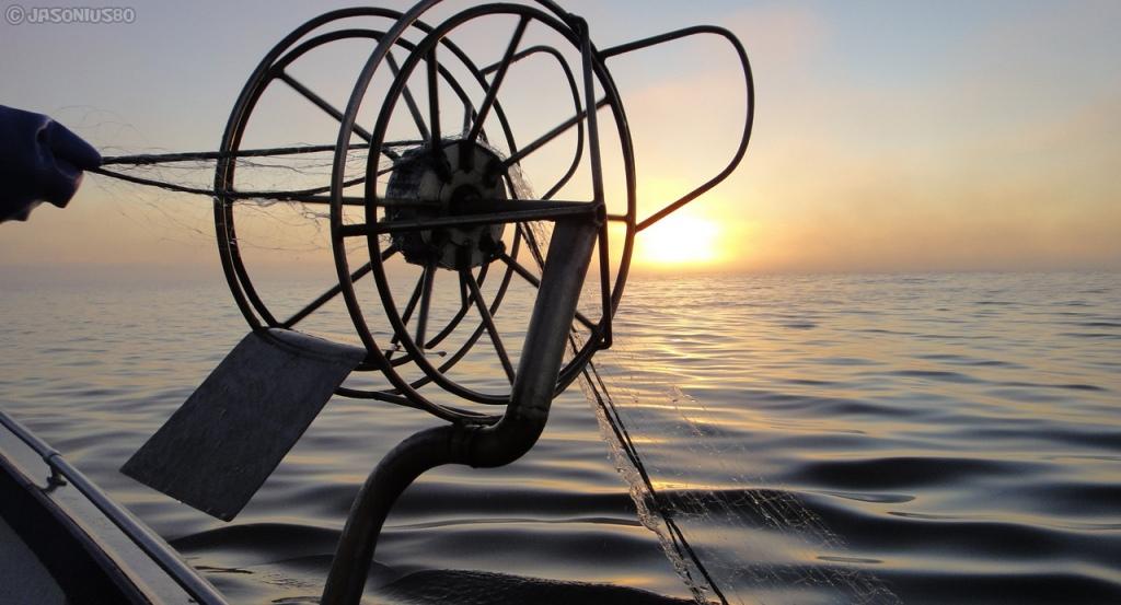 Verkonvetoa merellä aamulla