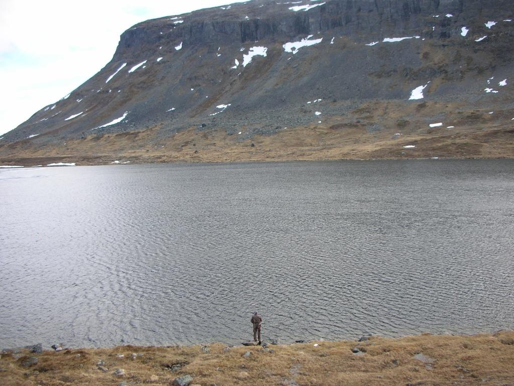 Saanajärvellä Nieriää keplottelemassa.