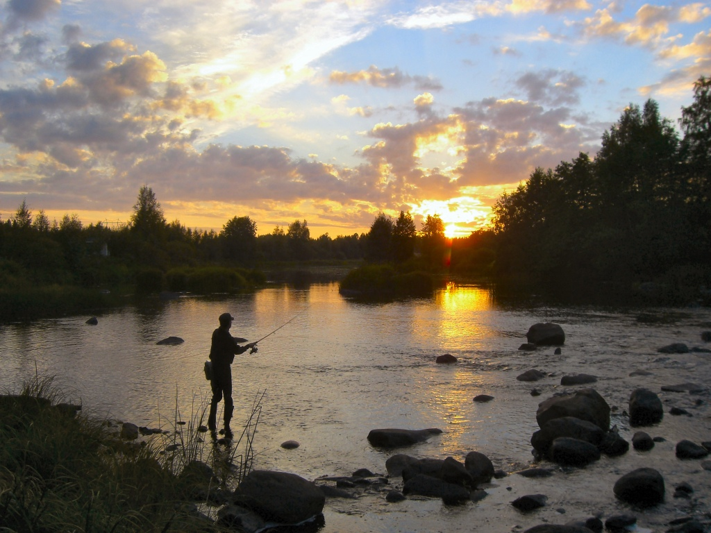 Merikarvianjoki 2010