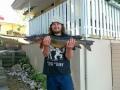 4,45kg hauki veneestä heittelemällä 30g Abu Garcia Hammer lusikkaan ; ) ; ) ; )