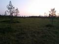 Rovaniemi 24.7.2014 oli kyll� komia maisema..