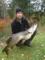 Hauki, 15.71kg. Jo toinen Jänisjoen hirviö, ja taas tuulastamalla!