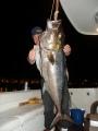 Yö kalastussaalista