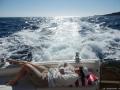 Merikalastuksesta ciestaaaaaaaann