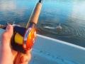 Uutta kelaa testailemassa