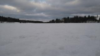 Kuusjärvi
