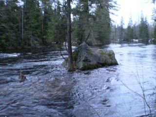 Jyräänjoki