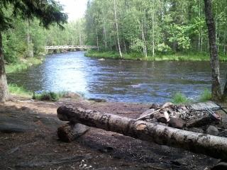 Kutujoki