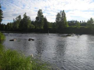 Kynäsjoki