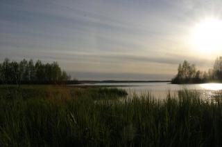 Näläntöjärvi