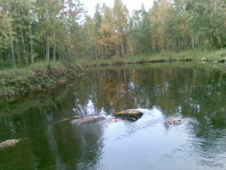 Perttausjoki