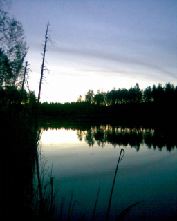 Salmijärvi