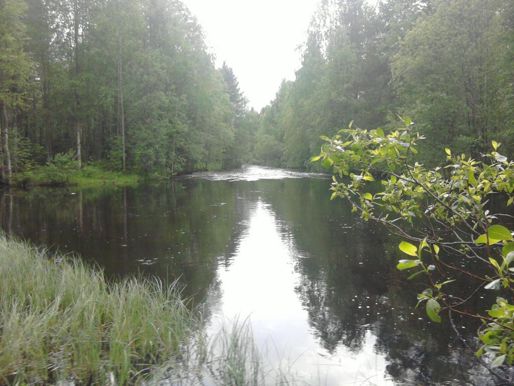 Puhosjärvi kalastus