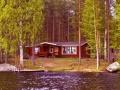 Riihiniemi (Raudanniemi), Mikkeli