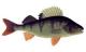 Tarkastele profiilia Pikkukala