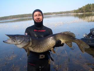 Hauki 11,32 kg