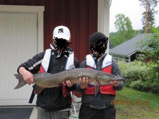Hauki 8,50 kg