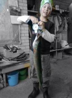 Hauki 4,00 kg