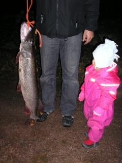 Hauki 10,40 kg