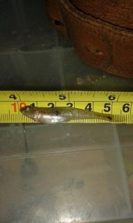 Hietatokko 10 g