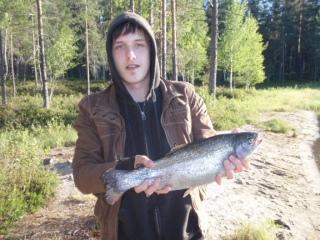 Kirjolohi 1,55 kg
