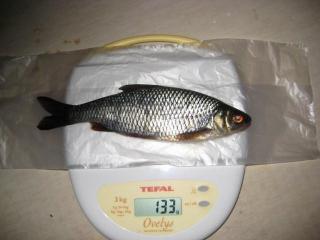 Särki 133 g