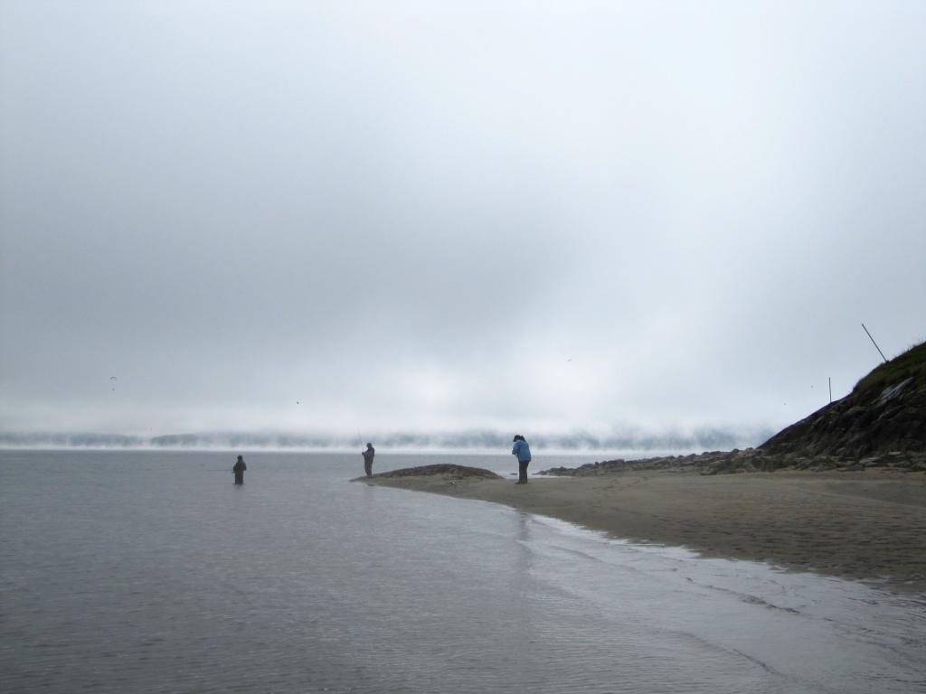 Kampelan kalastusta Jäämerellä