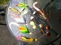 Spinnareita eri kokoisilla jigipyrstöillä modattuna: 3 kpl Lindy muskya, 2 kpl Sebileä ja 1 kpl Pig:iä