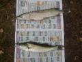 Sisko veti ensimmäisen kalan elämässään virvelillä...ja se oli tuo kuha...:)