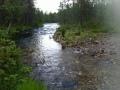 Luttojoki