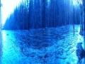 Lankoski ja sininenhetki
