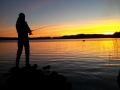 Kala lumoissa Mujejärven auringonlaskulla.
