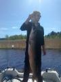Hauki 8kg/106cm