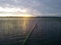 Maisemaa järveltä