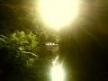 Silmunjoki