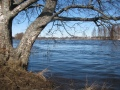 Pyhäjoki