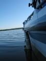 Noin puolentoista kilon hauki roikkui veneen kyljessä  ehkä 10 min..se nappas tosta kiinni viehettä irrottaessa .. kalaa ei siis aseteltu tuohon vaan se teki sen ihan itse..