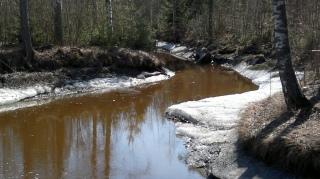 Ylöjärven kalasiepparit