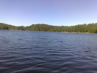 Haarjärvi
