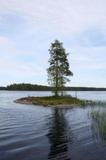 Iso-Mustajärvi