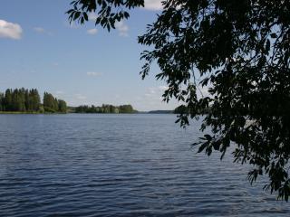 Kiurujärvi