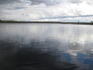 Puljunjärvi