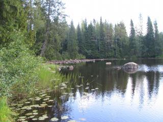 Sanginjoki