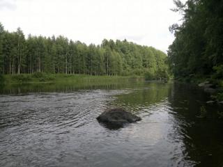 Summanjoki